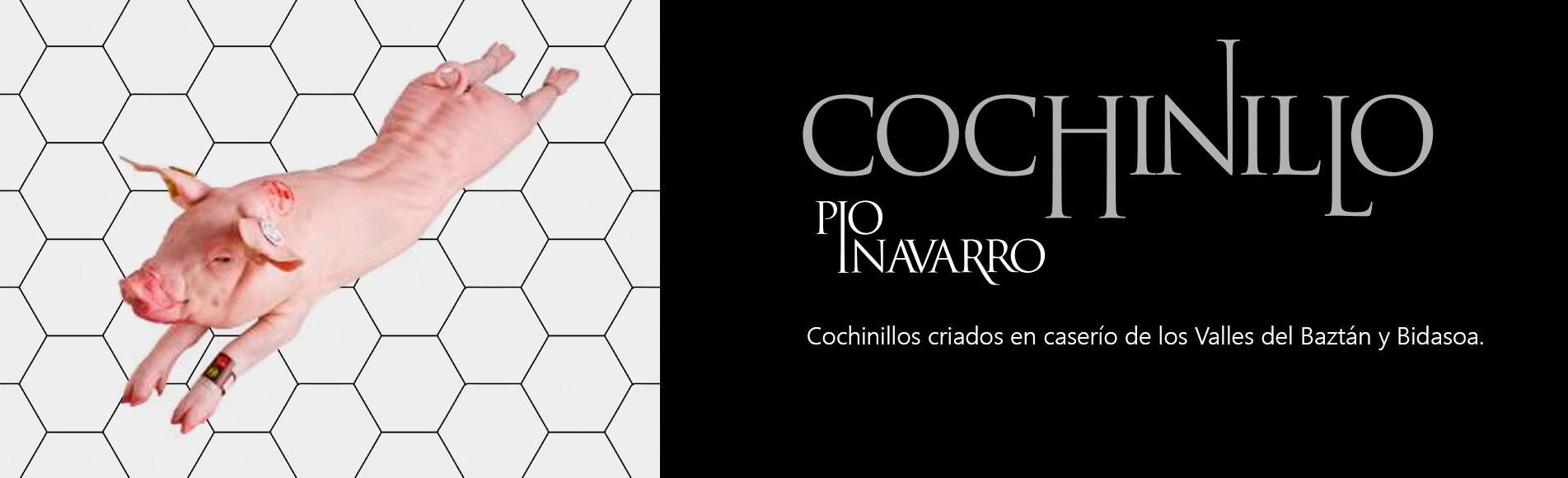 Cochinillo Pío Navarro de Navarra